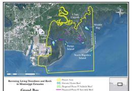 grandbay reef restoration