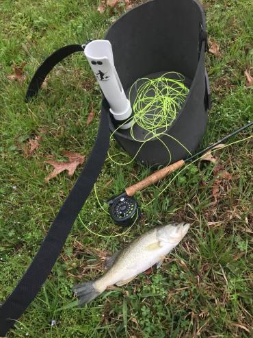 waterwasp fly bass